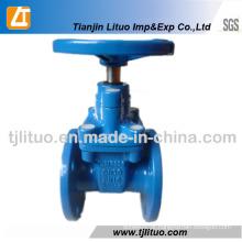 Válvula de porta dútile padrão do ferro do RUÍDO 3 polegadas