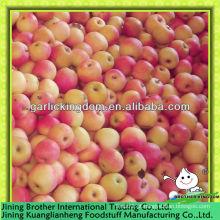 China shaanxi vermelho gala maçã