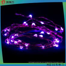Luzes da corda do fio de cobre do diodo emissor de luz para a decoração clara exterior