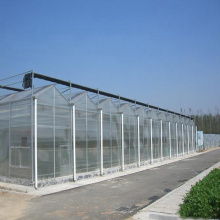 Venlo Multi-Span PC Board Greenhouse Pertanian