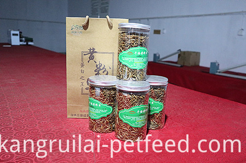 Protein Feed for Chickens