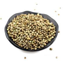 Hot selling hemp seed dry