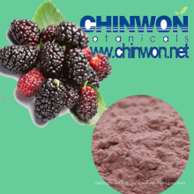 73. Instant Mulberry Juice Powder