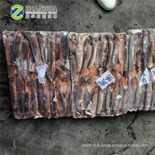 Nouveau calmar illex congelé 150-200g tout autour de la Chine calmar Prix de haute qualité