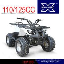 Mini Kids Use 110cc atv