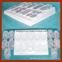 PVC Tierzelle Meiose Modell 10 PCS für Science Supplies