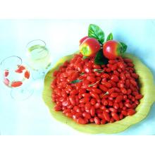 Baies de Goji séchées Sunshine Super Fruit-280 Grains / 380grains / 580grains / 680grains