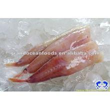 Meeresfrüchte IQF gefrorener Seeteufelschwanz
