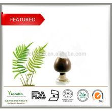 Extracto de hierba de alta calidad Extracto de Polypodium leucotomos 4: 1