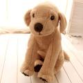 Plüsch kleiner Hund