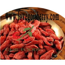 Kering Goji Berries / Residu pestisida rendah wolfberry-2017 Crop