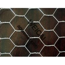 Hexagonal Wire Netting, Chicken Wire, Galvanized Finished