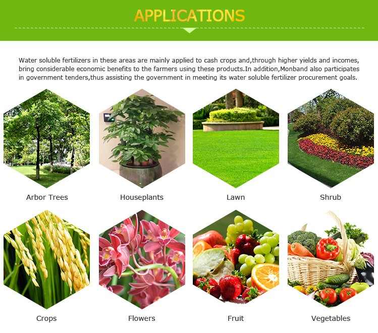 Water Soluble 15-5-35 Fertilizer For Fruit Trees