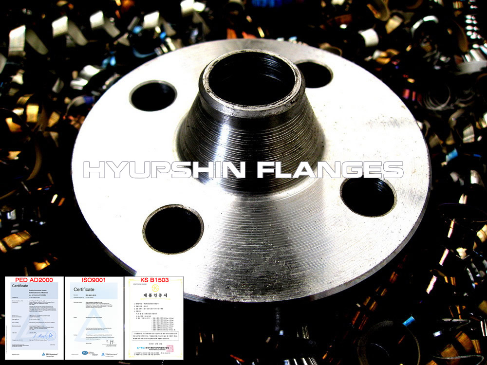hyupshin_flanges_welded_neck