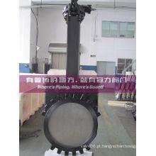 DIN Ductile Iron Válvula de Retentor