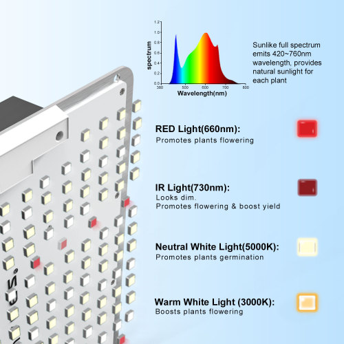 100W Full Spectrum ip65 Wasserdichte LED Grow Light Zimmerpflanzen
