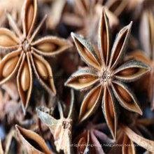 Chinese Star Anise Extract Ácido Shikimic 98%