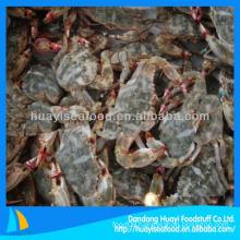 New season frozen mud crab 40g
