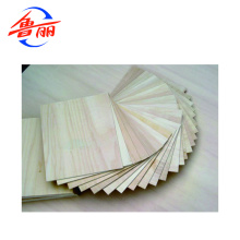 Plywood for buliding boats