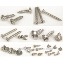 Customized different types of screw bolts from manufacturer