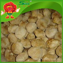 Hericium Erinaceus secado para la venta seta silvestre comestible rara