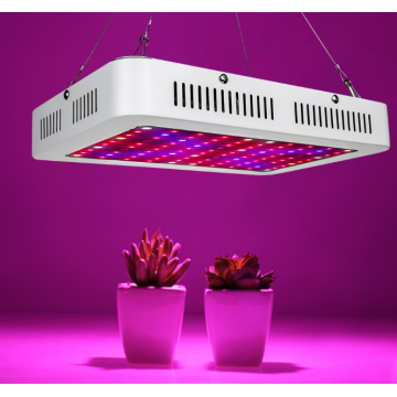 600W LED Grow Light de espectro completo de tercera generación
