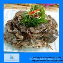 New high quality fresh iqf mud crab