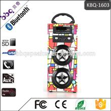 Unterstützung USB, tf-karte, Aux-in, FM, Bluetooth Retro Tragbare Karaoke-Lautsprecher-System