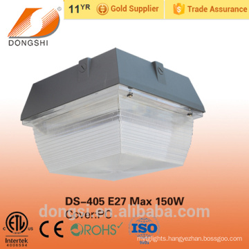 60W Packing And Garden LED Light