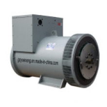 Marathon-Generator (8 ~ 350 KW)