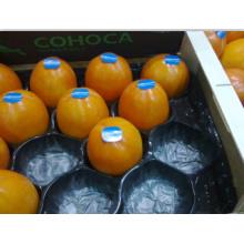 La FDA aprobó la bandeja plástica disponible de la fruta del uso popular de la granja de los EEUU para el caqui hecho de los PP de la categoría alimenticia