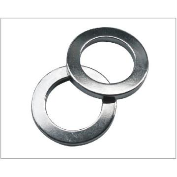 Ring Permanent Magnet for Speaker