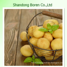 High Quality Fresh Potato From Shandong