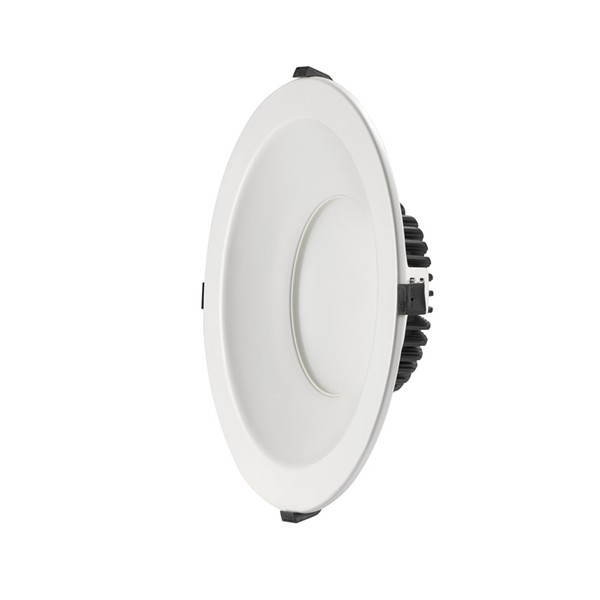 10 inch downlight single