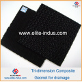 Geocomposite Composto Tri-Dimension Gefet Geometria de HDPE Fabrinet para Drenagem