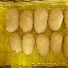 Fresh Holland Potato Mesh Package