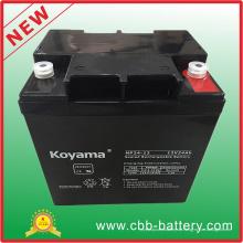 12V 24ah Bleisäure AGM Batterie für UPS / Überspannungsschutz