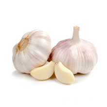 2017 Fresh Peeled Garlic Clove Low Price Bulk Sale