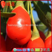 Das meistverkaufte getrocknete Goji Beere Goji Beeren Goji Beere hilft, Gewicht zu reduzieren
