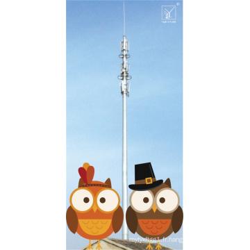 Tour en acier stable de communication de GSM pour China Mobile