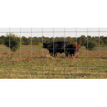 Cerca de gado de malha de arame barato de alta qualidade forte