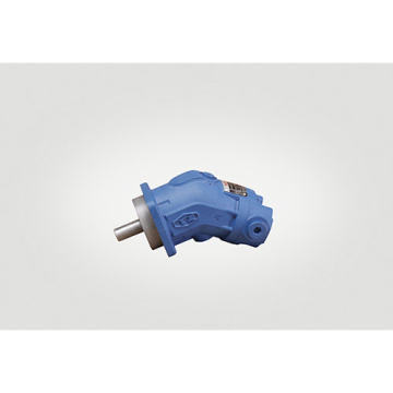 Hydraulic Piston Motor Quantitative Motors