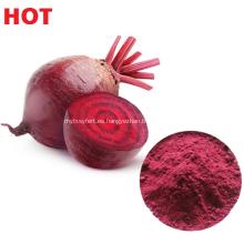 Extracto de remolacha en polvo vegetal natural