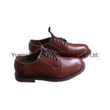 Sapatos de escritório de alta qualidade do exército com bom preço