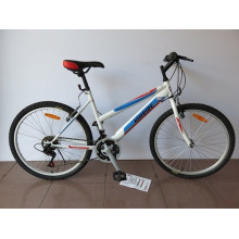 "24"" Steel Frame Mountain Bike (CZ2404)"