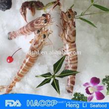 HL002 mariscos congelados mejores camarones con precio barato