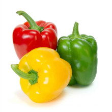 2021 New Season Bell Pepper Sweet And Fresh In Red Yellow Green Bell Pepper