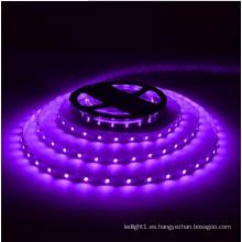 Tira de LED morado Ce y Rhos 30SMD5050