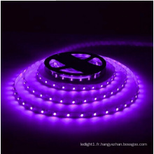 Bande LED violette Ce et Rhos 30SMD5050
