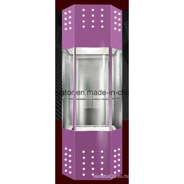 Buena máquina sin ascensor panorámico